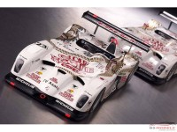 LMM124032 Panoz LMP Roadster-S  Team Dragon #22/23 Multimedia Kit